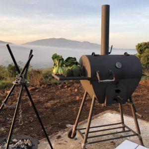Lò nướng tách khói 65L